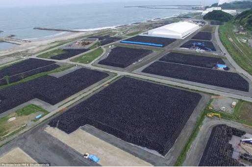 Fukushima9.jpg